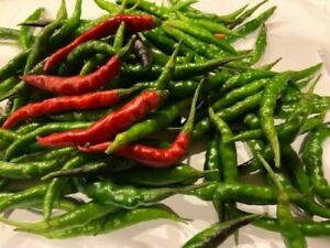 50+ 2020 Fresh Seeds Chile De Arbol Chili Peppers Mexican Extra Hot & Productive