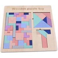 Montessori Preschool Wooden Educational Kids Brain Development Tangram Toys