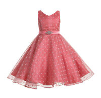 Organza Polka Dot Flower Girl Dress Pageant Dresses Graduation Dress Bridesmaid