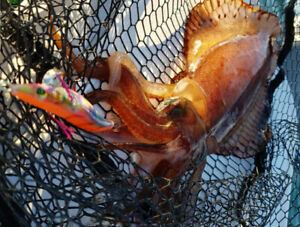 Nakatomi squid jig BarGlow orange red back rainbow red belly rattle Pro egi lure