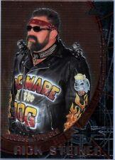WCW Rick & Scott Steiner 1999 Topps Embossed Chrome Double Sided Insert Card