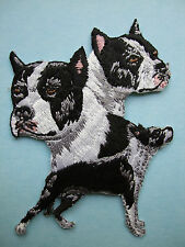 Iron-On Embroidered Patch - American Staffordshire Terrier