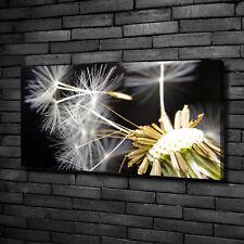 Leinwandbild Kunst-Druck 100x50 Bilder Blumen /& Pflanzen Pusteblume