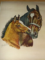 VINTAGE OLE LARSEN 2 HORSES MARE & FOAL AMERICAN PRIVATE COLLECTION PRINT