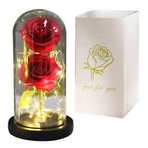 Eternal Beauty and the Beast LED Light Galaxy Rose in Glass Dome Valentines Gift