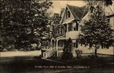 Callicoon New York USA postcard ~1920/30 Glassel Villa Partie an der Villa Park