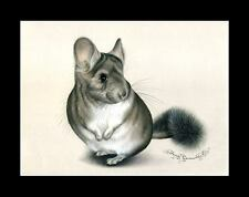 Chinchilla Print Little Cutie by I Garmashova