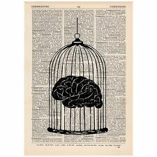 Brain In A Cage Dictionary Print Vintage,Anatomy, Satirical, Art, Unique, Gift,