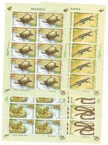MOLDOVA Sc 501-5 NH MINISHEETS + SOUVENIR SHEET of 2005 - REPTILES