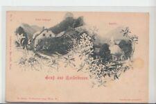 74995/26- Gruß aus Kaiserbrunn mit Hotel Schepf Höllental um 1905