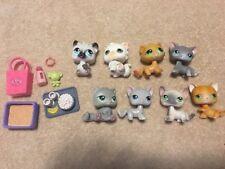 LPS Cat Lot Littlest Pet Shop Lot Of 8