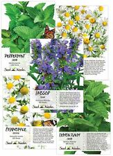 Medicinal Herb Seed Collection (5 Individual Seed Packets) Non-Gmo
