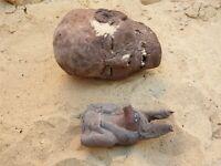 Rare Antique Ancient Egyptian God Anubis Bust Dead Grave mummification 2480 BC