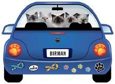 Birman Cats-Pupmobile Magnet