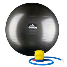 Black Mountain Products Static Strength Exercise Stability Ball with Pump -Black