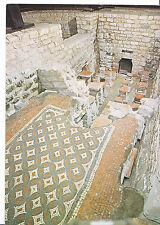 Gloucestershire Postcard - Chedworth Roman Villa - Baths of Damp Heat    AB2141
