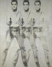 Warhol Andy Elvis Canvas 16 x 20  #7389