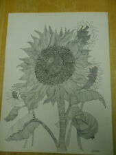 """ORIGINAL SIGNED INK DRAWING """" SUNFLOWERS """"."""