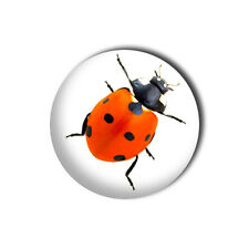 Ladybird 1 inch/ 25mm Button Pin Badge - Insect Summer Red Book Novelty Joke