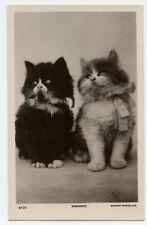 1920s Cute Fluffy Cat Kitten long hair haired British photo postcard