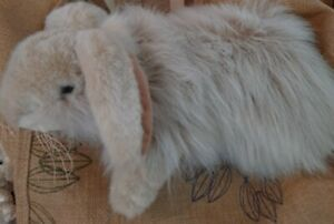 """BEAUTIFUL Angora Bunny Rabbit Plush Long Fur, 14"""" Realistic Weighted MUST HAVE!"""