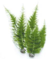 Biorb Plantes Colorées Moyennes Fougère D'hiver pour Aquarium