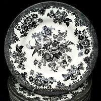 Royal Stafford 4 Asiatic Pheasant Black Salad Plates 8.5 inch Toile 3 Sets Avail