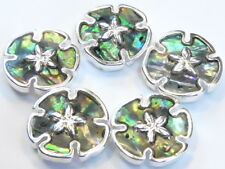 5 - 2 HOLE SLIDER BEADS SILVER PLATED EPOXY COATED ABALONE SEA SHELL SAND DOLLAR