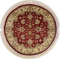 Rugstc 5x5 Senneh Chobi Ziegler Red Area Rug,Natural dye, Hand-Knotted,Wool Pile