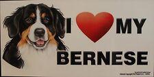 Bernese Magnet Dog Display Anywhere Car Refrigerator Work File Cabinet