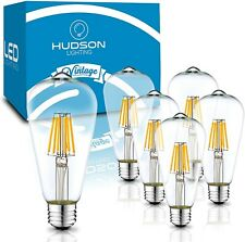Hudson Lighting LED Edison Light Bulbs: 6 Watt, 4000K, Dimmable, 6 pack