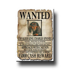 CAVALIER KING CHARLES SPANIEL Wanted Poster FRIDGE MAGNET No 3
