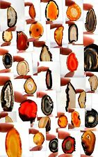 Agate Polished Natural Collectable Minerals/Crystals