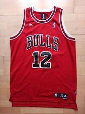 Kirk Hinrich Chicago Bulls Adidas Swingman Trikot Jersey NBA L RARE