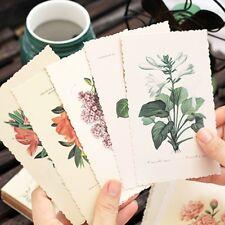 30 pcs/set Vintage Herbage Plant Wishing Bottle Postcard Greeting Card