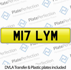 M17 LYM MOLY MILY MILLY MOLLY MOL MIL CHERISHED PRIVATE NUMBER PLATE DVLA REG