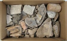 Box of Pre-Columbian Pottery Shards, Variety of Sizes and Shapes