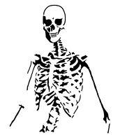 high detail airbrush stencil  skeleton  FREE UK POSTAGE