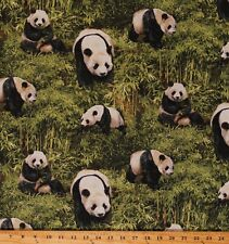Cotton Panda Bear Bamboo Animals Wildlife Jungle Fabric Print byYard D474.36