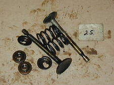 Briggs & Stratton 1150 #15T2 11.5HP Side Shaft Engine OEM Valves Springs Keepers