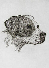 Geoffrey Lasko - English Pointer Dog - Listed Artist Etching -S&N - Free Ship