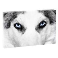 Deko-Bilder & Wölfe mit 3D-Effekt für Hunde