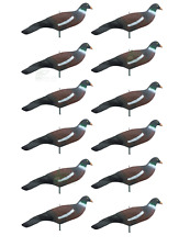 12 X XL HD peint Pigeon Decoy Shell Shooting Decoying Moving empilable A1