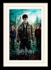 Harry Potter Deathly Hallows Part 2 Framed & Mounted Print