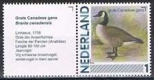 Persoonlijke zegel Vogels / Birds MNH 2791-Aa-19 + Tab/L: Grote Canadese Gans