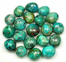 TUMBLED - (1) Large CHRYSOCOLLA Crystal w/Description Card - Healing Stone Reiki