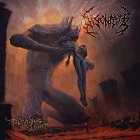 Disentomb - The Decaying Light (NEW CD)