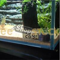 Thermomètre Numérique vitre et aquarium ESS TECH® Électronique LCD 3D Températur
