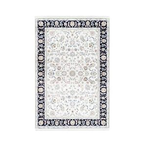 6'x9' Wool & Silk 250 KPSI Nain All Over Design Hand Knotted Oriental Rug R62756