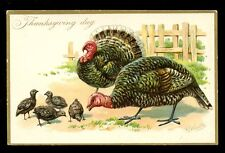 Greetings Thanksgiving Turkey artist drawn R J Wealthy Tuck 123 Embossed PPC